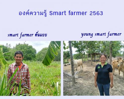 smart farmer ต้นแบบ 2563